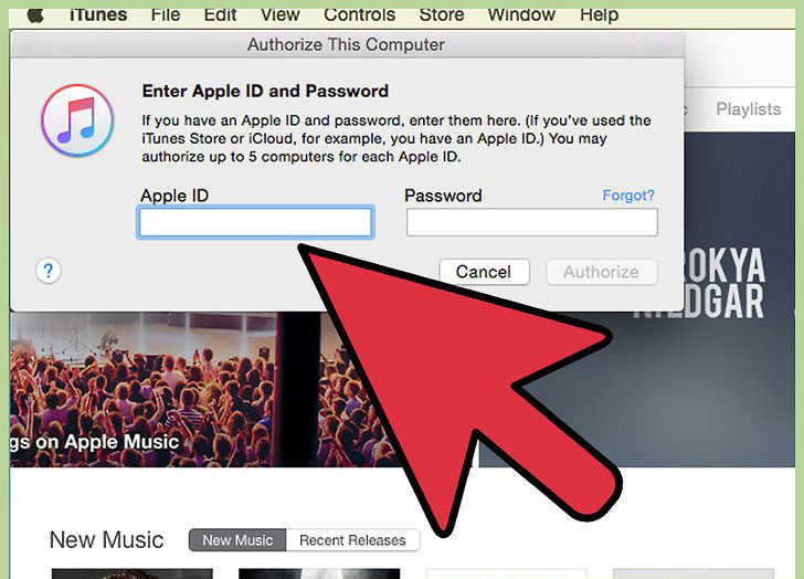 How to Transfer music from ipod to Mac-Enter-ID-Step-3