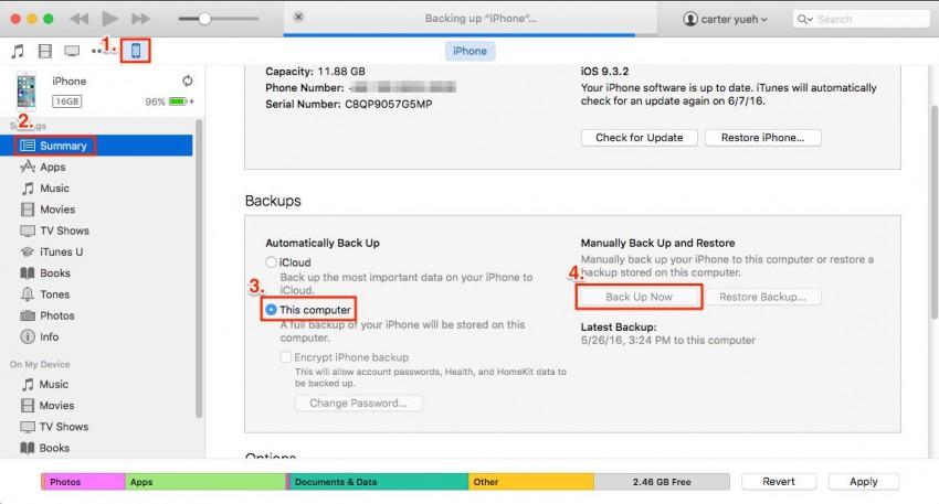 backup dell'iPod con iTunes