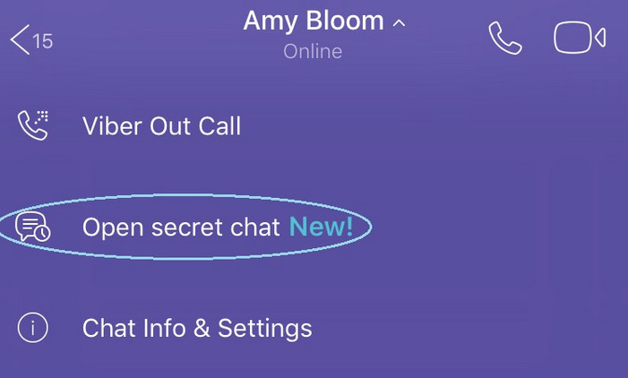 viber feature 6 open secret chat