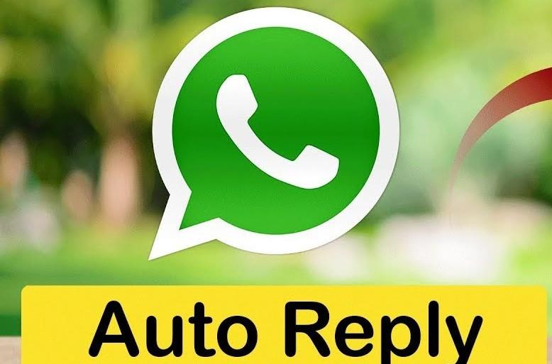 whatsapp business auto reply 1