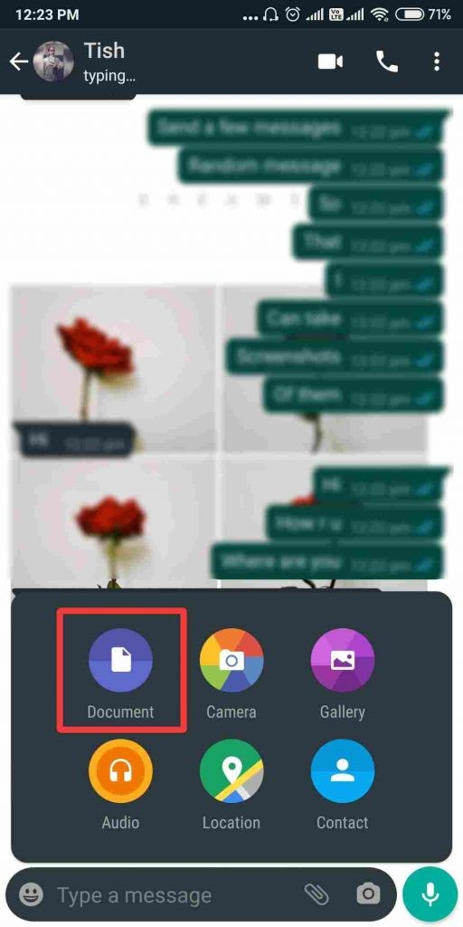 document whatsApp