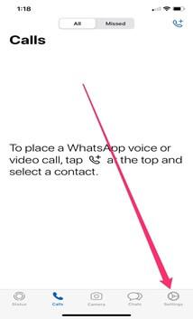 Whatsapp settings on iphone