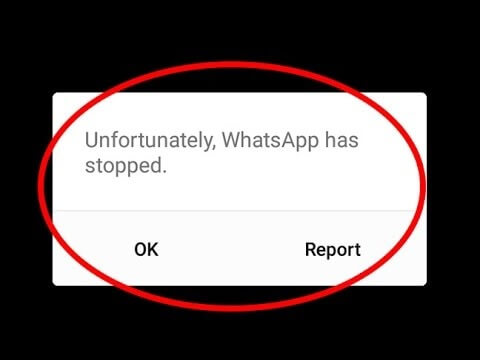 WhatsApp-unresponsive
